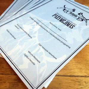 Individualūs diplomai